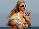 Paris Hilton looks sexy in a tiny bikini on the beach paparazzi shots